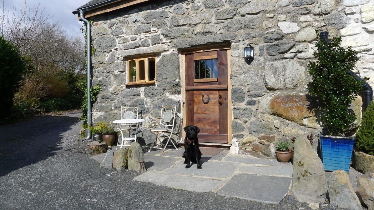Dog Friendly holiday cottage