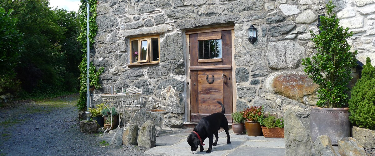 Dog friendly holiday cottage