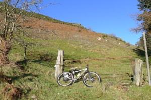 MTB North Wales