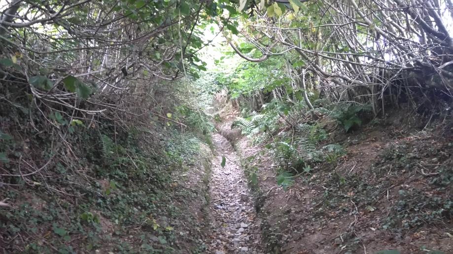 sunken-lane